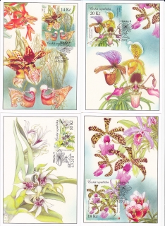 CARTES MAXIMUM Krása Orchidejí CM 85-88
